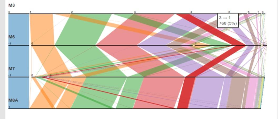 Visual Analytics for Multivariate Health Informatics