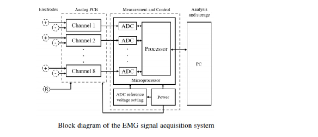 Surface-EMG system -a real time portable low-cost multi-channel surface electromyography system
